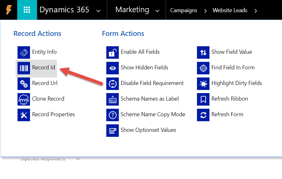 WordPress to Dynamics CRM Power Pane